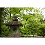 stone lanterns at Meiji Shrine