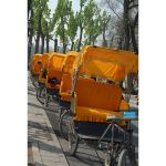 Half Day Tour of Beijing - Visit the Beijing hutongs in a rickshaw with Rea