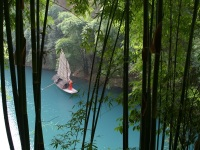 the-three-gorges-bamboo-forest readyclickandgo