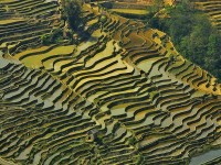 Honghe Rice Terraces, China ReadyClickAndGo