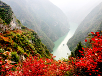 lesser-three-gorges-red-leaves